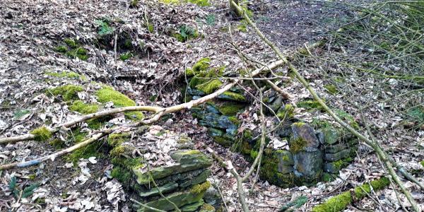 Remnants of Bütgenbach castle