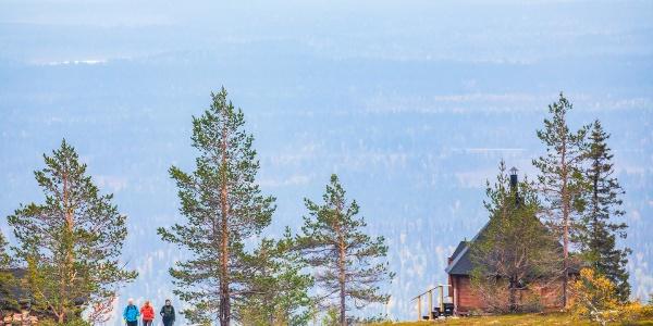 Tuomikurun kota sijaitsee Yllästunturin rinteellä puurajassa. Kodalta avautuu maisema pitkälle horisonttiin.