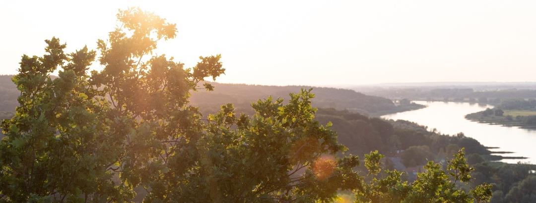 Blick auf die Elbe vom Aussichtsturm Kniepenberg