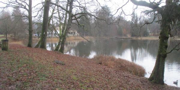 étang de Hasselfurth
