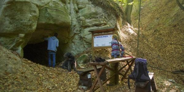 A barlang vadregényes bejárata