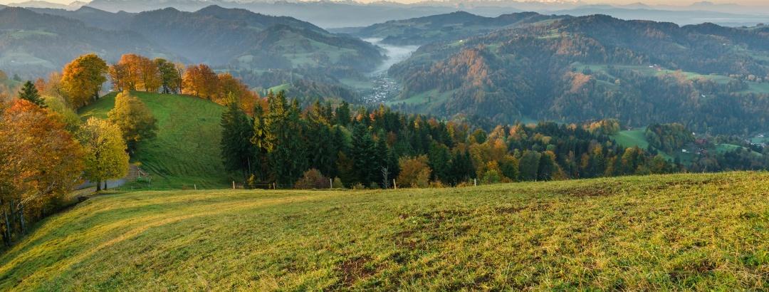 Panorama-ausblick vom Hörnli