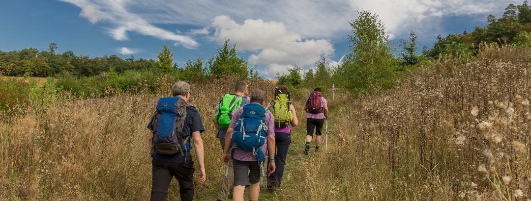 Unterwegs im Nationalpark Kellerwald-Edersee - 24-Stunden Wanderabenteuer Edersee