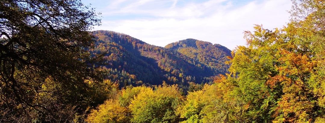 Herbst in den St. Pauler Bergen