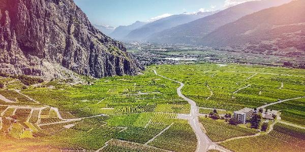 The vineyards of Chamoson