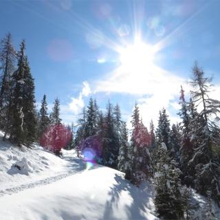 Winter landscape to the Moschwaldalm Mountain Hut