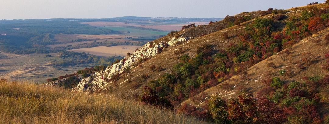 Kilátás a Baglyas-hegy oldalából