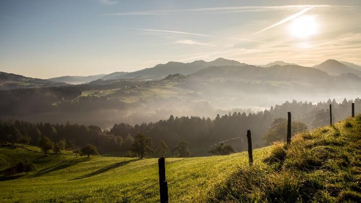 Der Bregenzerwald