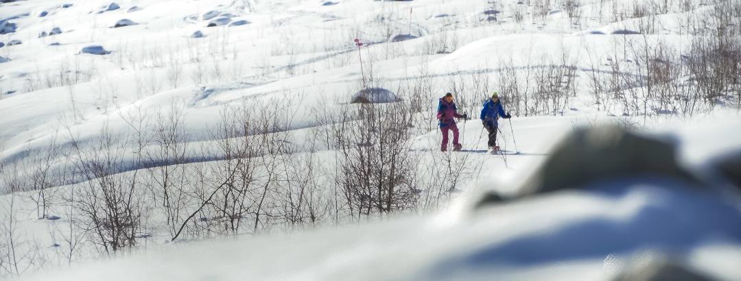 Snowshoe trail Morteratsch