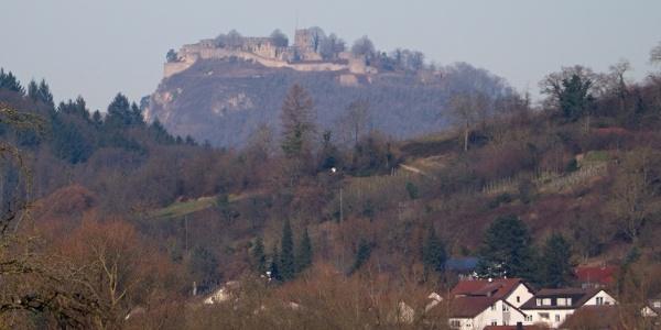 Blick zur Festungsruine Hohentwiel