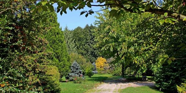 Erdőtelki Arborétum