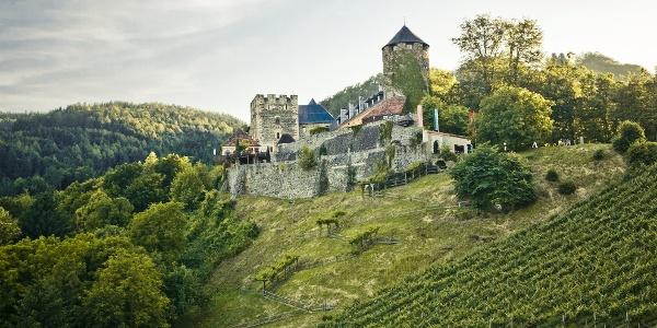 Burg Deutschlandsberg mit Blick auf den Weingarten des Burghügels