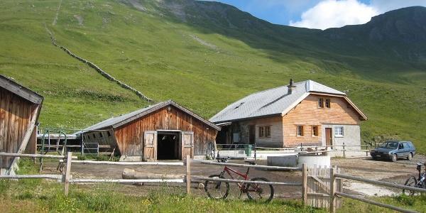 Alp Lasa