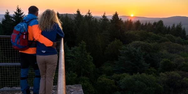 Blick vom Aussichtsturm am Koppenstein