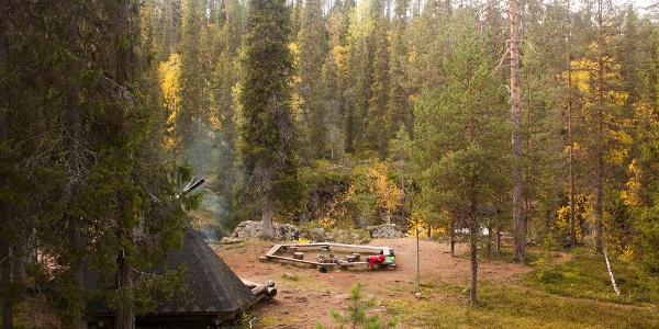 Campfire site surrounded by beautiful forest, Salla