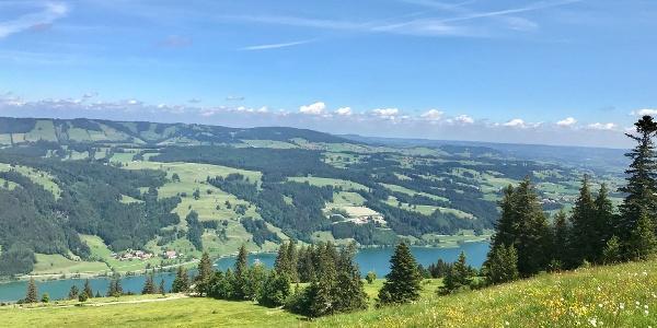 Blick oberhalb Starkatsgund zum Alpsee