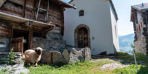 Chapel of Our Lady of Mercy in the hamlet of Burgen near the holiday resort of Törbel, Moosalp region