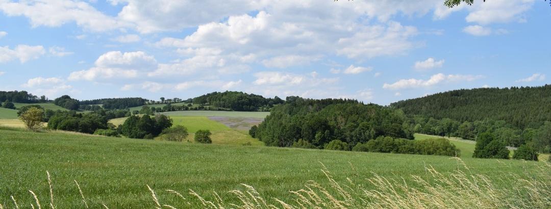 Ausblick auf Flachsfeld