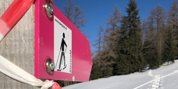 Unterwegs auf dem Schneeschuhtrail Blaswald