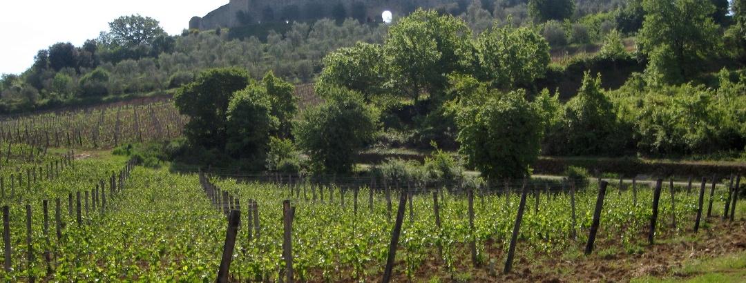 Monteriggioni, ein mittelalterliche Kastell