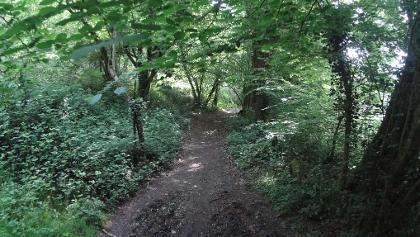 Circuit des Ardoisières (Rochefort en terre