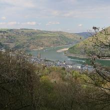 Rheingold-Blick