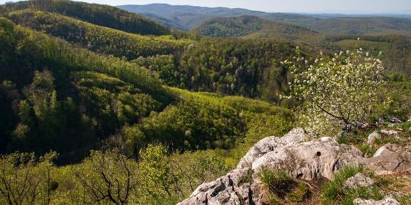 A Gulicska sziklája remek kilátópont: panoráma az Északi-Bükktől a Tátráig