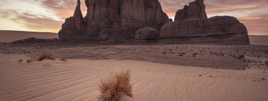 Wüstenlandschaft in Algerien