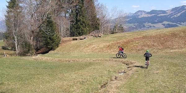 Feldweg zum Bergblickweg