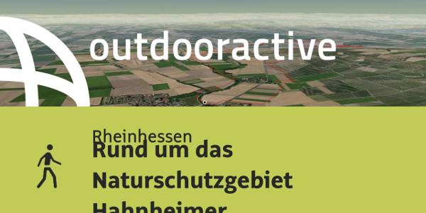 Wanderung in Rheinhessen: Rund um das Naturschutzgebiet Hahnheimer Bruch und ...