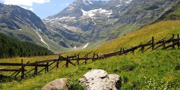 Wanderung zur Lazinser Alm