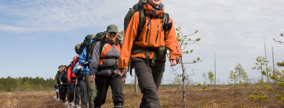 Hiking at Säynäjänsuo