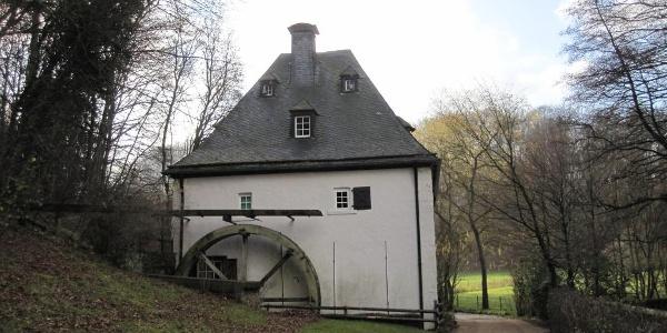 Abstecker zur Hallenthaler Mühle