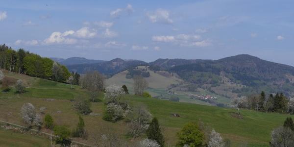 Ausblick in den Schwarzwald bei Käsern
