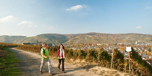 Unterwegs in den Weinlagen oberhalb des Klosters Calvarienberg