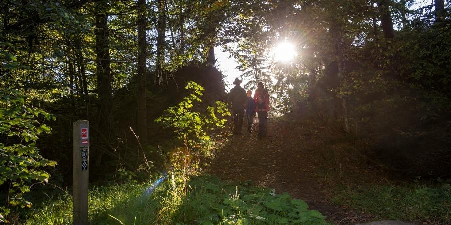 Ranger met familie in het bos