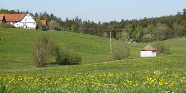 Blick ins Kollbachtal