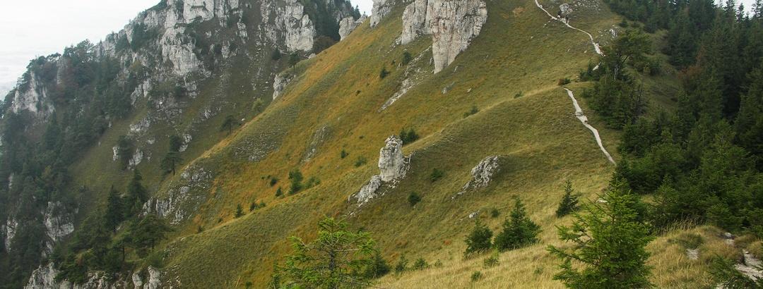Western Carpathians – Big Fatra – Western summit of the Ostrá, Slovakia