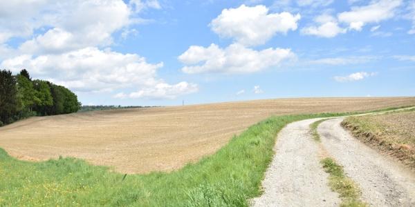 Blick in die Landschaft bei Stagl