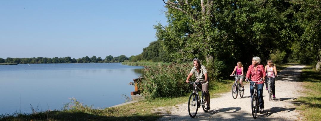 Parcours VTT - Grande boucle des étangs de la Brenne (Centre-Val de Loire)