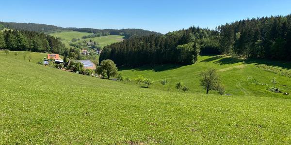 Blick vom Neudorf in den Finsterbach