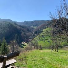 Panoramablick vom Wanderweg