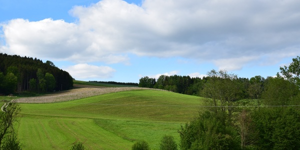 Landschaft Stubenberg