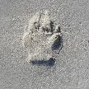 Profilbild von Jochen Hahn