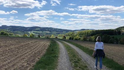 Von Reiste nach Beisinghausen