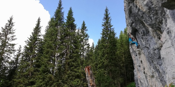 Falesia POZA VECIA - Climbing