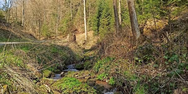 Der Weg führt am Lengenbach entlang Richtung Oberlengenhardt