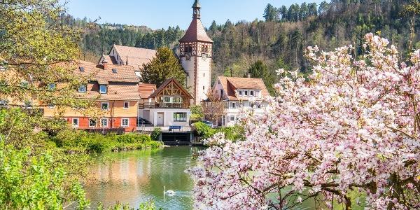 Die Tour startet im schönen Bad Liebenzell