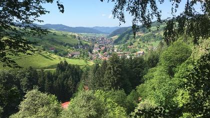 Blick ins Harmersbachtal