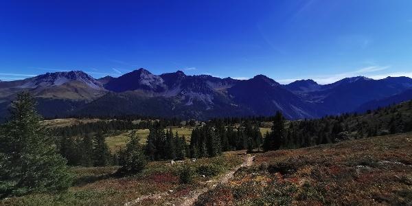 Scheidegg Trail